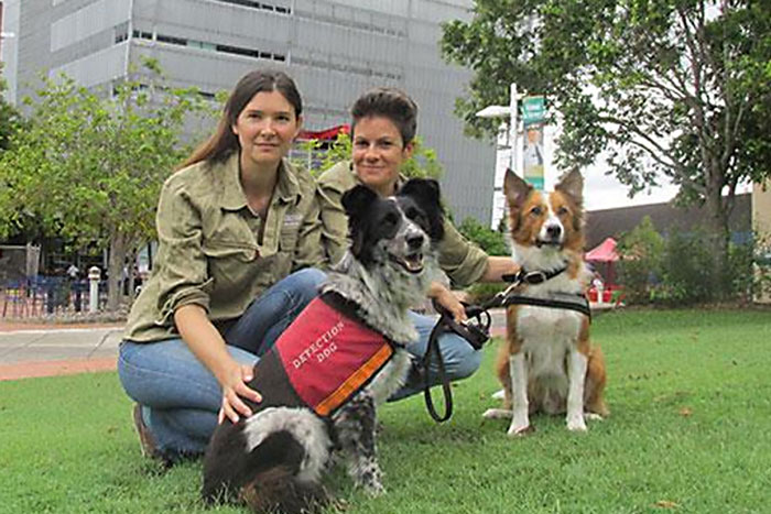 USC – Dog Detection Program